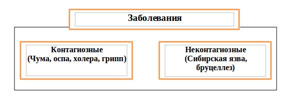 Рис. 5 Классификация заболеваний